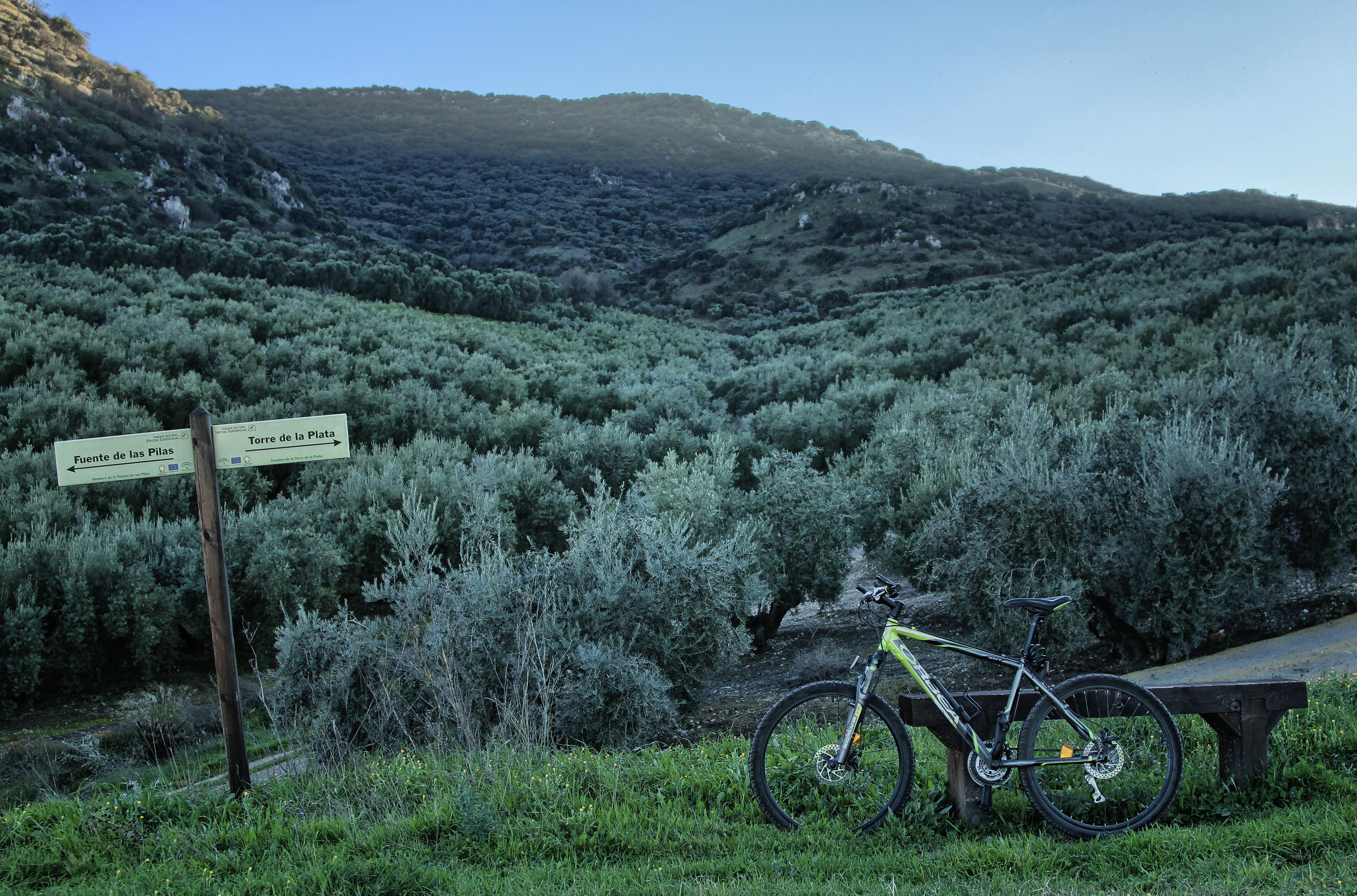 Ruta en bicicleta del Centro Cicloturista Subbética