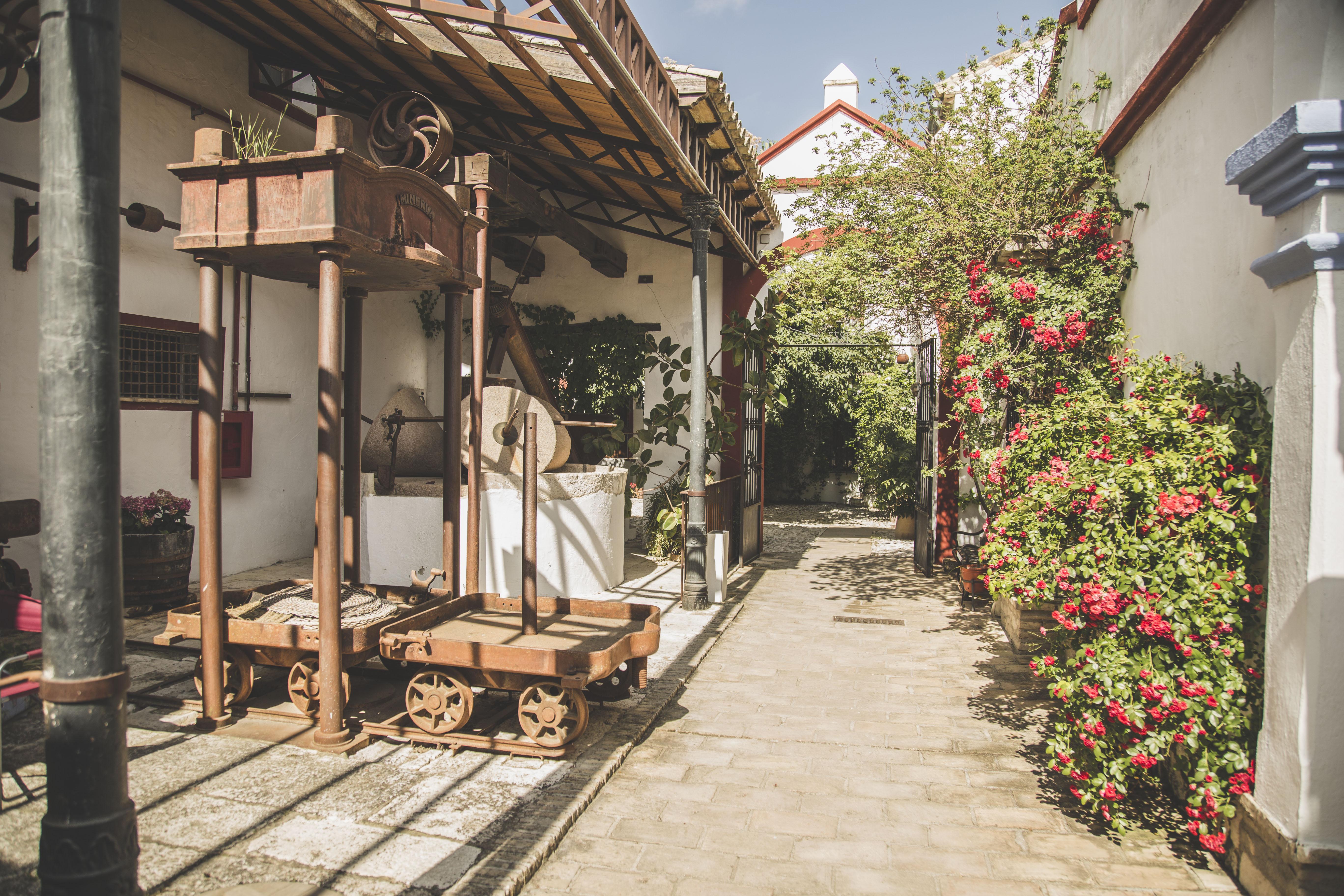 Antiguo molino en Hacienda Minerva