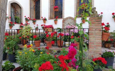 Descubre la Subbética entre flores, alegría y color