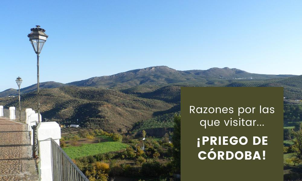 Razones por las que visitar… ¡Priego de Córdoba!
